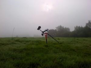 The field where it all began (Image: Peter den Tek)